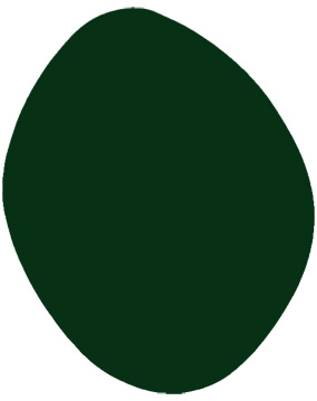 dark green mobile swatch